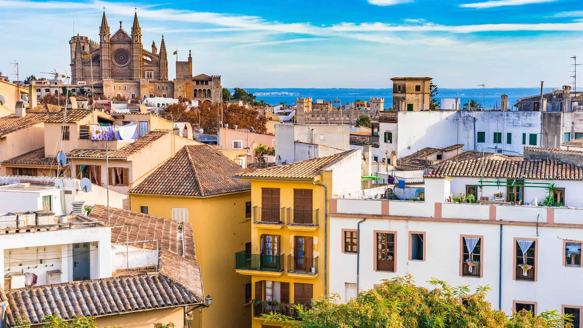 Movistar Palma: tiendas y cobertura 5G