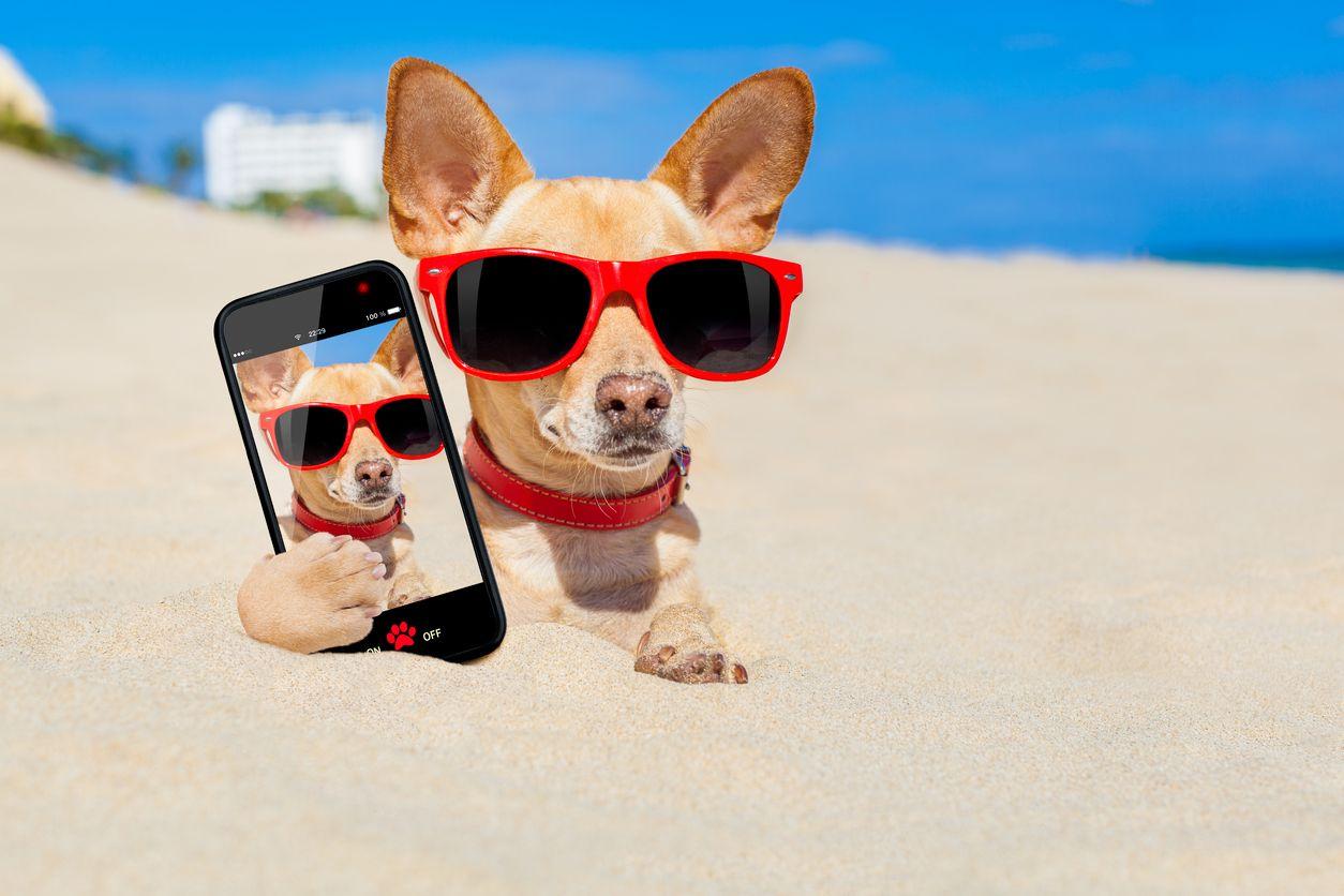 Apps de móvil para tus vacaciones