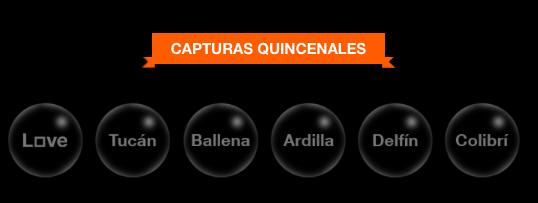 atrapa-orange