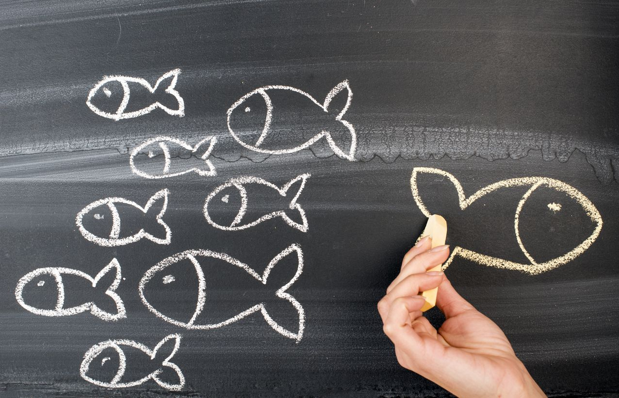 Peces dibujan la portabilidad a Econet